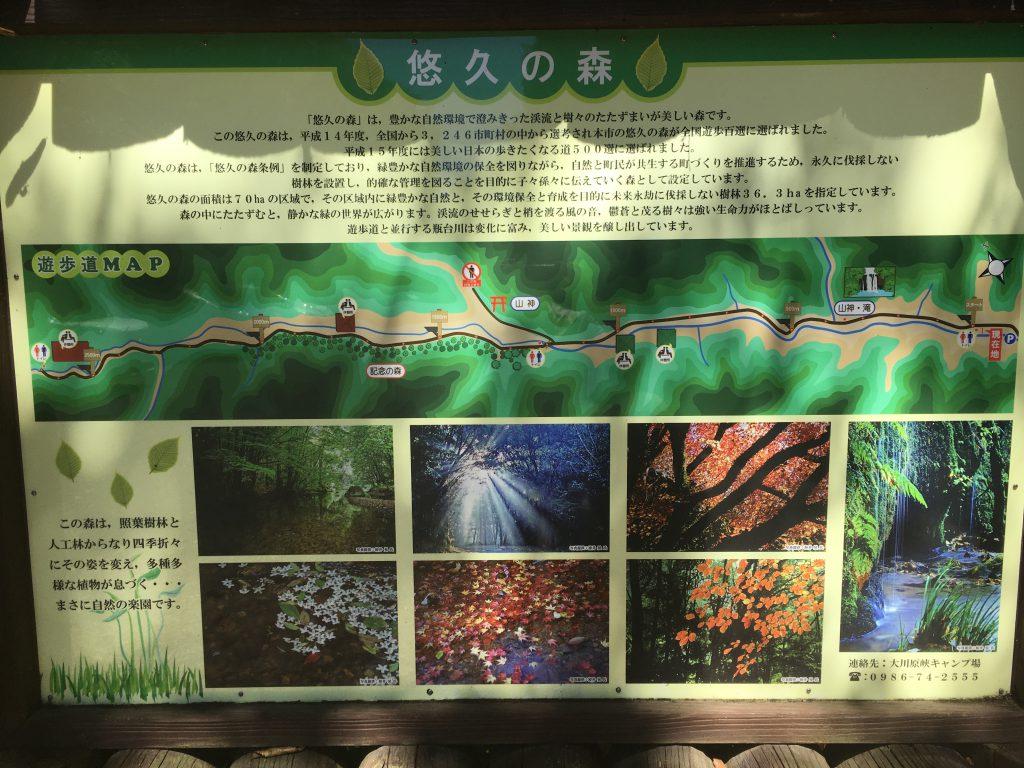 悠久の森入口
